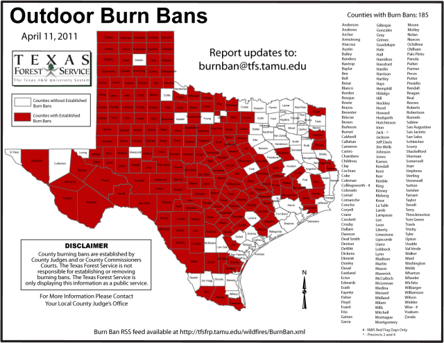 Texas Wildfire Map